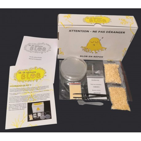Slime mold culture kit