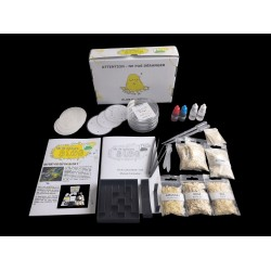 Slime mold culture kit - Special Experiments